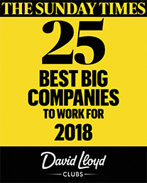 The Sunday Times 25 best big companies